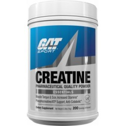 GAT - ESSENTIALS CREATINE MONOHYDRATE 300GR