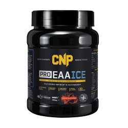 CNP PROFESSIONAL - EAA 300G