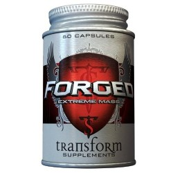TRANSFORMS - FORGED EXTREME...